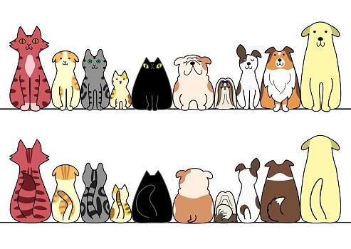 Wir für Ihr Tier - Tierarzt Drömling